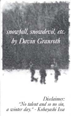 snowfall, snowdevil, etc. by Davin Granroth
