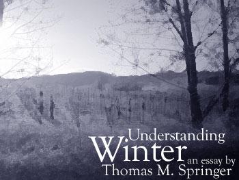Understanding Winter by Thomas M. Springer